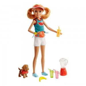 Barbie Sisters Stacie Doll and Smoothie Accessory Set [Sale]